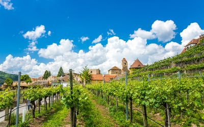 Private Tour Wachau – Castles – Abbeys & Churches