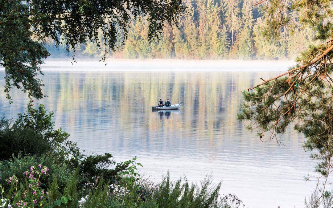 Fishing & horse riding at the Vltava lake reservoir